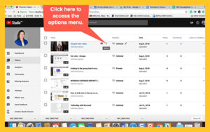 Screenshot of options menu in YouTube